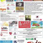 Maratonina e Camminata della ValTordino - Petriccione di Castellalto (Te) - Eventi per famiglie Abruzzo
