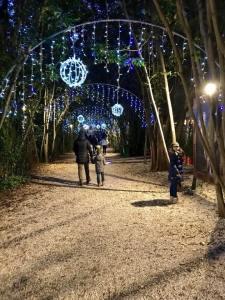 Il-Fantastico-Castello-di-Babbo-Natale-Lunghezza-35