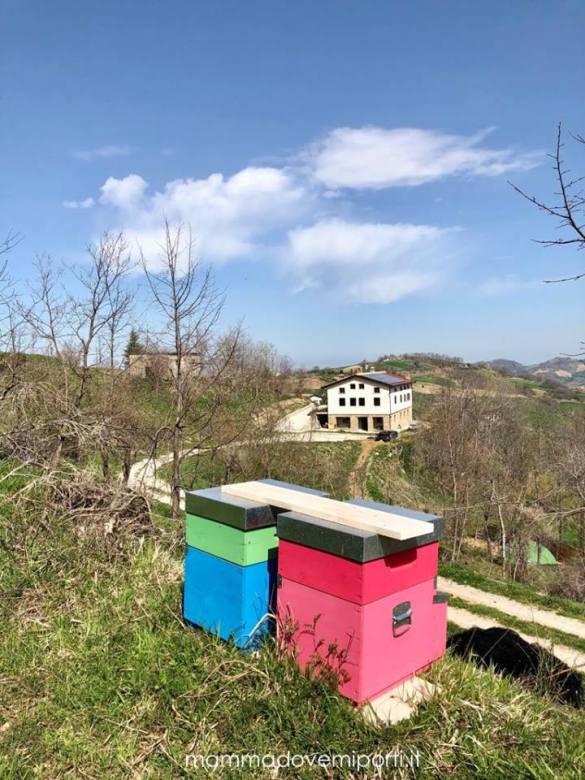 Agriturismo-Colle-Sette-Vangeli-Arsita-TE-39