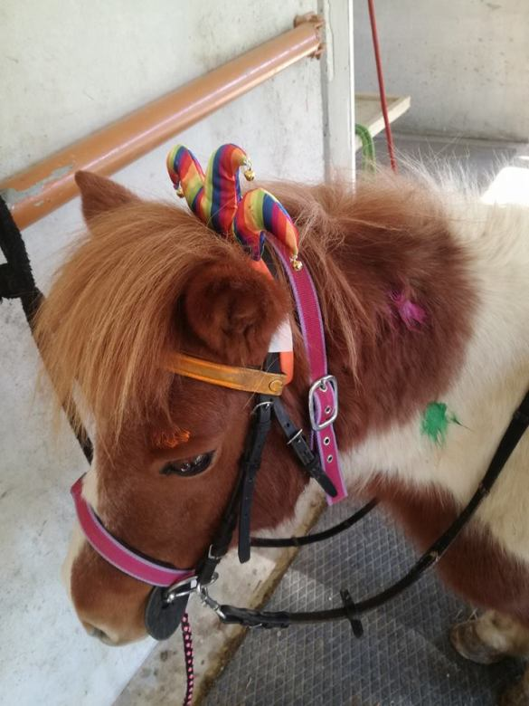 L'Arcobaleno Asd Pianella - Pony