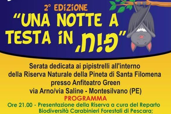 Una-Notte-a-testa-in-giù-Riserva-Naturlale-della-Pineta-di-Santa-Filomena-Montesilvano-PE