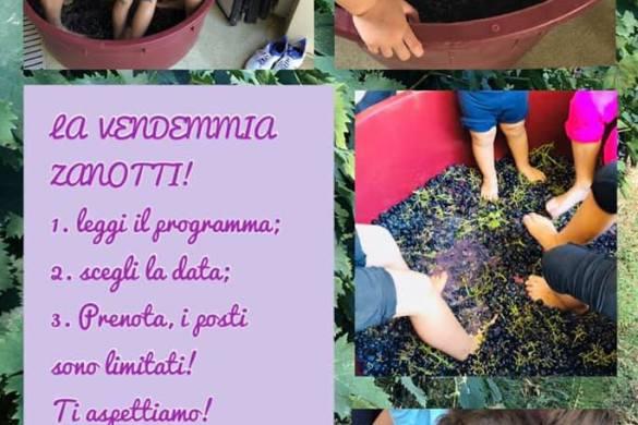 Vendemmia-Zanotti-Gusto-&-Passione-Moscufo-Pescara