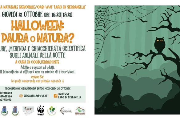 Halloween-Oasi-WWF-Lago-Serranella-Sant-Eusanio-del-Sangro-Chieti