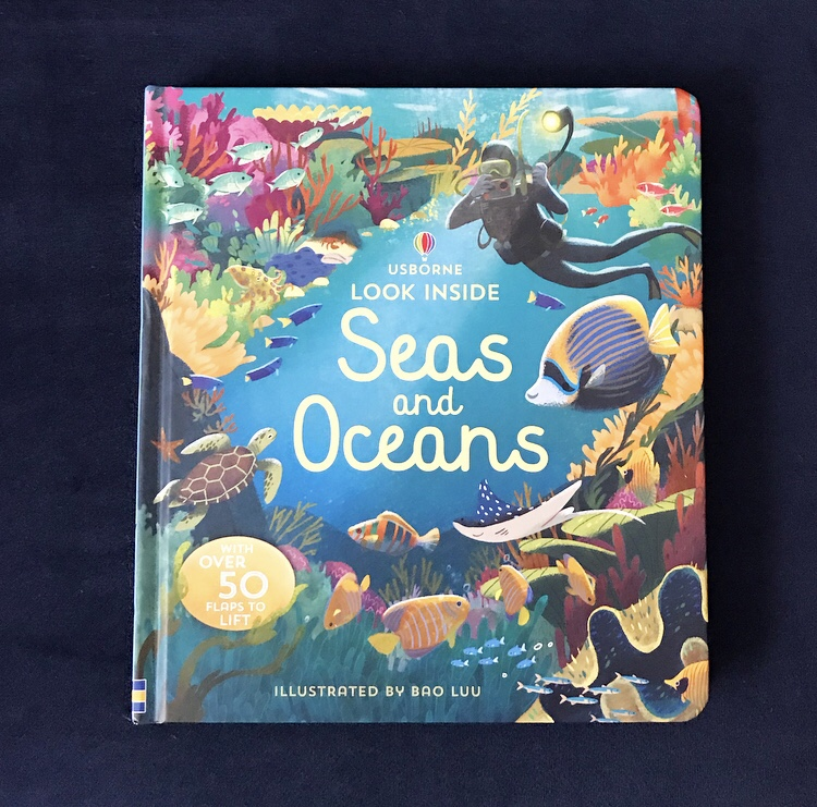 Book review Usborne look inside seas and oceans