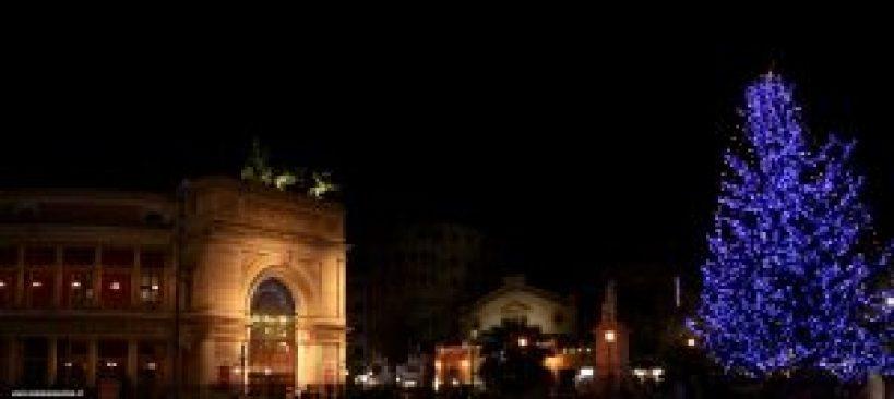 Abete di Natale a Palermo