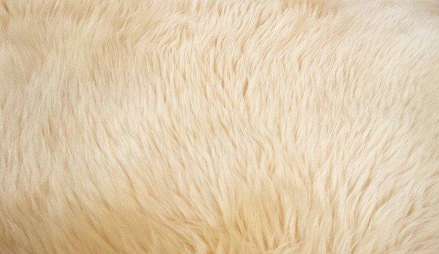 Come pulire il tappeto a pelo lungo