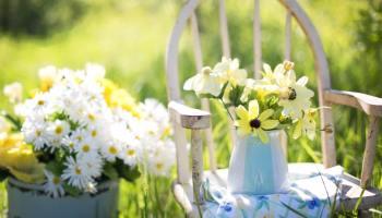 arredare un giardino con pochi soldi