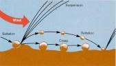 SCIENCE erosion wind CreepSaltSusp