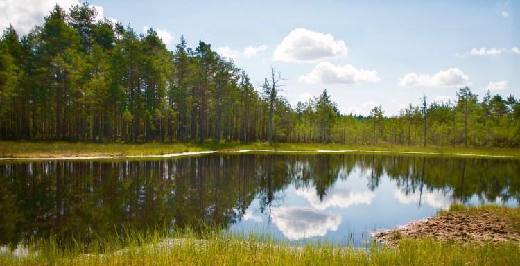 Beautiful Earth, Tallin, Estonia