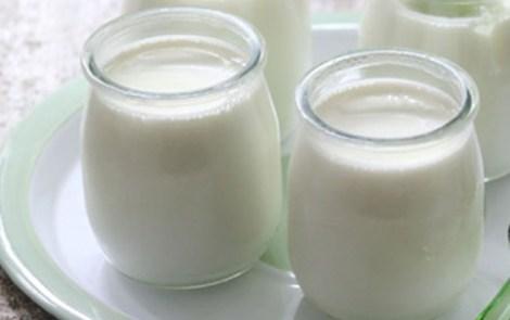 4 recettes de yaourts «faits maison» à partir d'un an