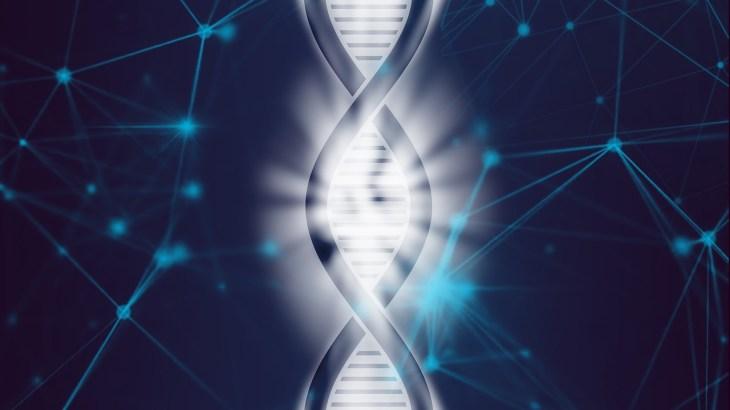 中3理科 生命の連続性「遺伝の規則性・対立形質・分離の法則・顕性の法則」まとめと問題