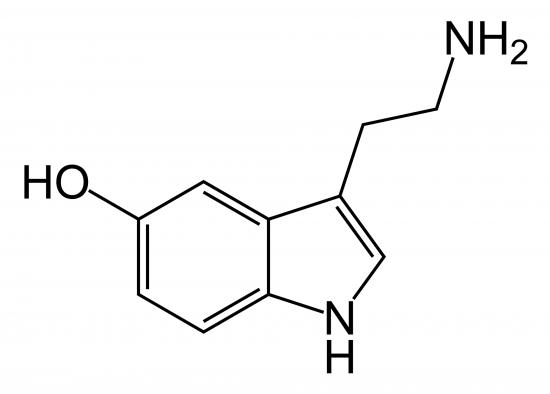 セロトニン