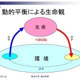 動的平衡-ルドルフ・シェーンハイマーの実験-