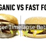 某有名チェーン店のハンバーガーとオーガニックハンバーガーの腐敗具合を比べてみた