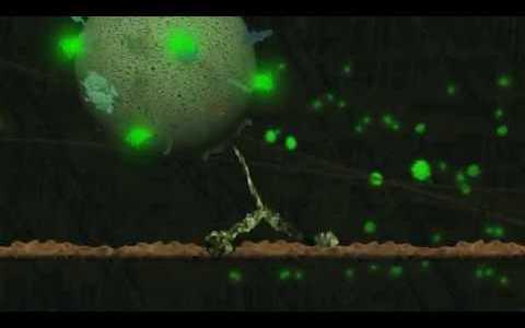 モータープロテインの小胞にGFP(蛍光タンパク質)をつけて移動する様子を観察してみた