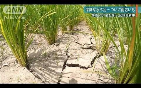 【NEWS】西日本の一部が未だ梅雨入りしない!!水不足が深刻化