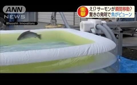 【NEWS】サケに朗報!ダムが出来ても一瞬で上流に登れる機械が作られる
