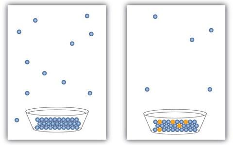 希薄溶液の現象(蒸気圧降下、沸点上昇、凝固点降下)
