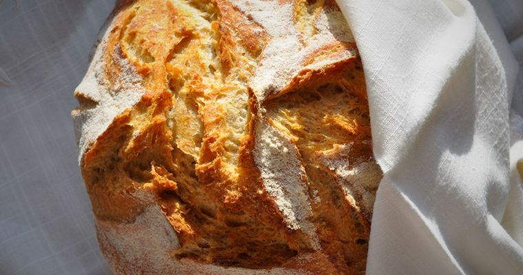 How to have fresh bread every day