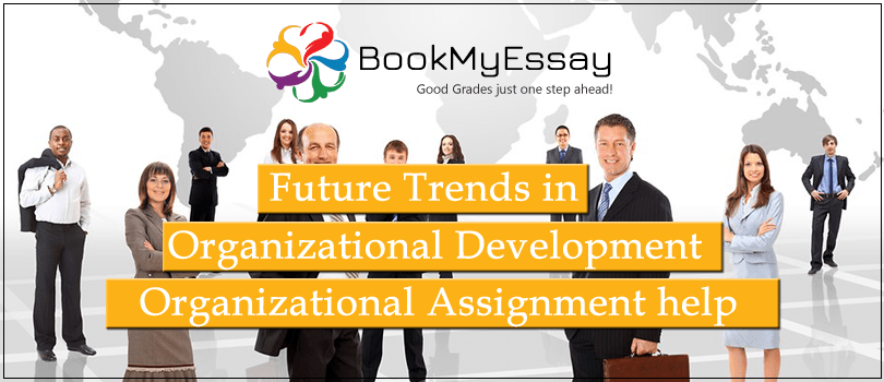 organizational assignment help