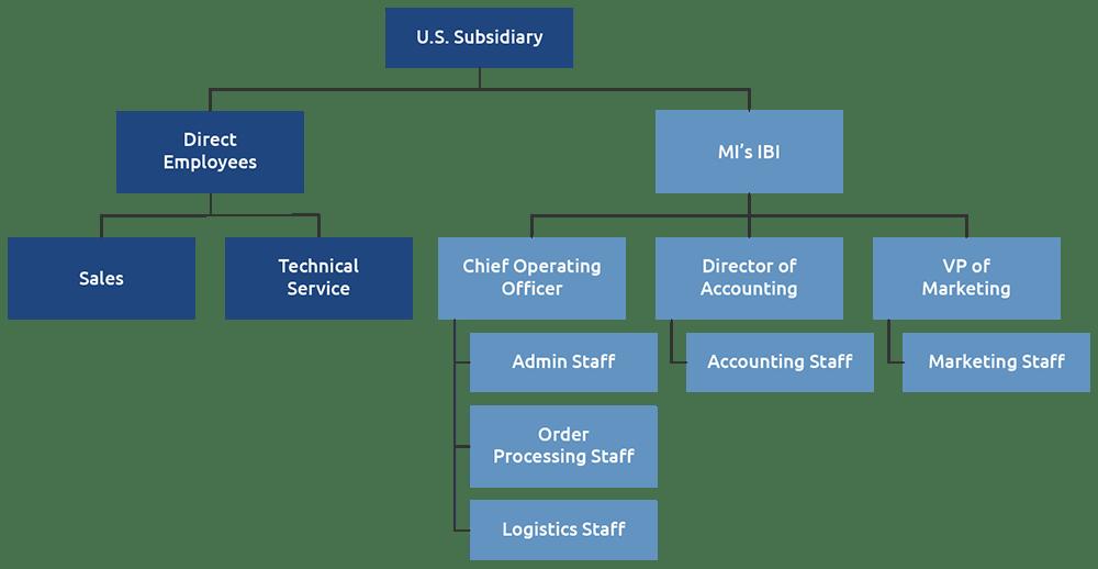 International Business Incubator org chart