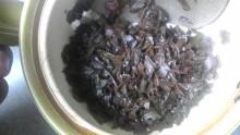 島根西製茶所20120327-3