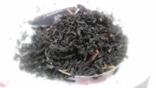 高知香ル茶20120330-1