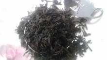 20130802さしま紅茶1
