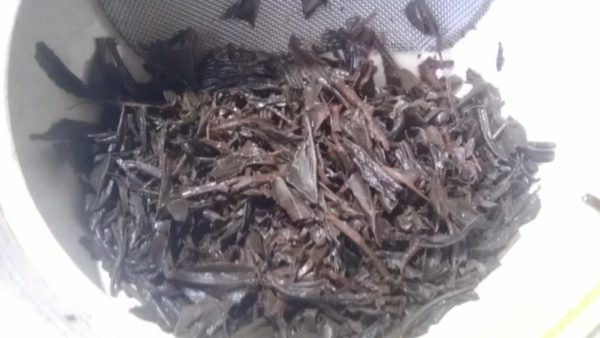葉香製茶20130928 葉香製茶おくみどり2013 -3