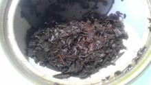 国産紅茶20131105丸子紅茶べにひかり2011-3
