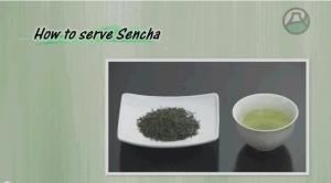 煎茶いれ方20140717-1