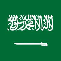 Saudi Arabia looking to diversify its economy through the Saudi Aramco IPO