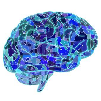 cerveauconf
