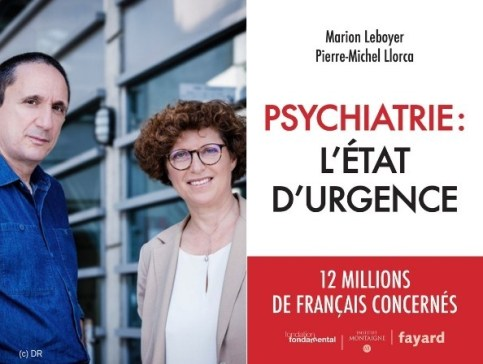 leboyer_llorca_psychiatrie_letat_durgence