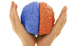 Programacion-neuro-linguistica-y-comunicacion-de-alto-impacto