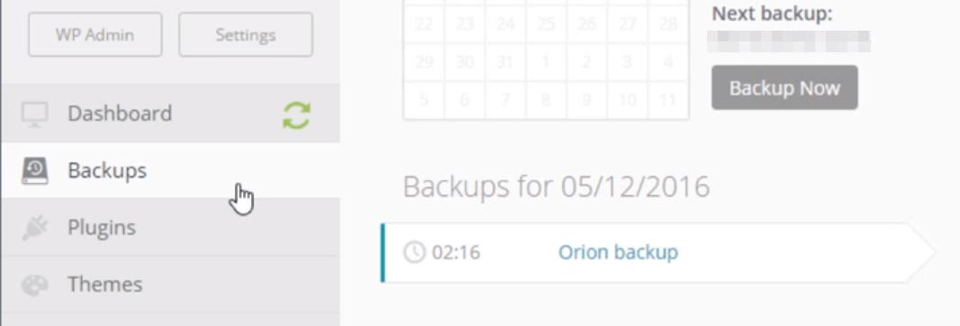 Creating a backup using ManageWP.
