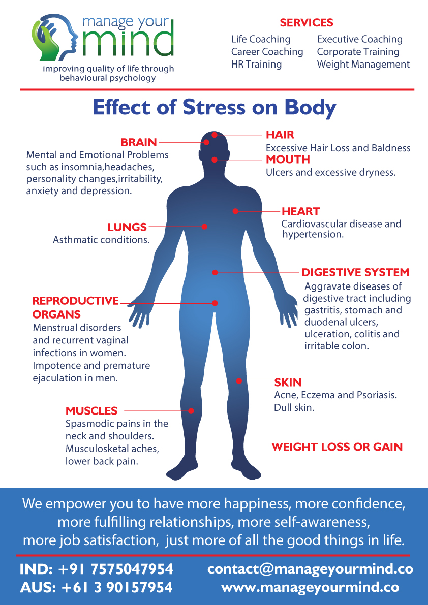 Effect of Stress on Body Infographic