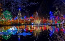 christmas-lights-vandusen