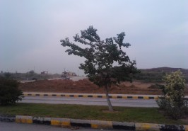 Gulberg-Residencia-Islamabad-Pictures-67