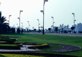 Palm City Lahore Images 2