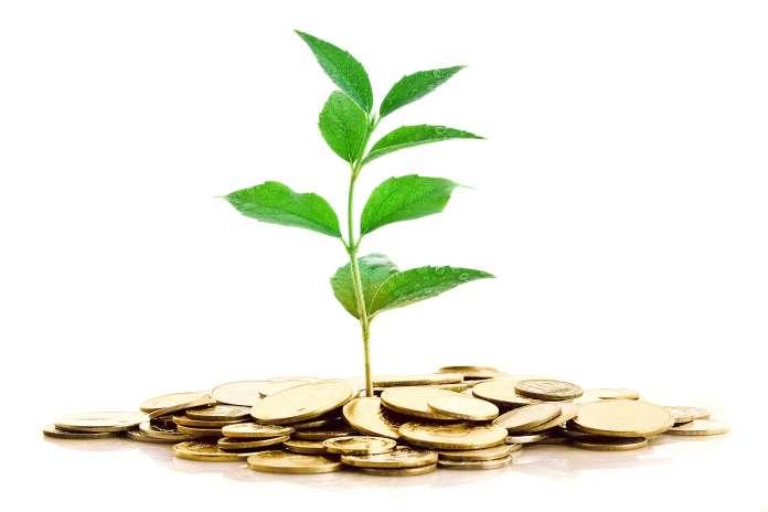 Belajar Investasi Selagi Muda