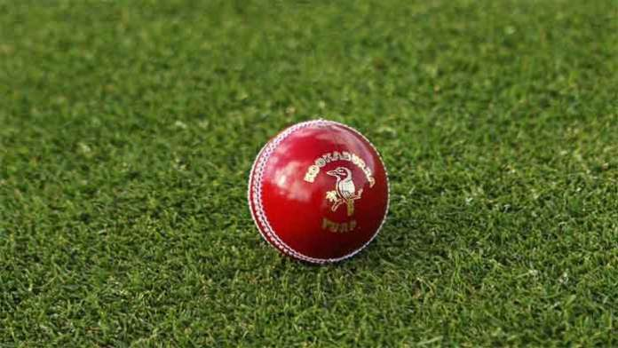 new type of smart balls will be introduced in cricket