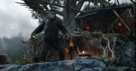 Dawn-of-the-Planet-of-the-Apes-photo-2