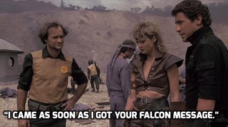 falcon message