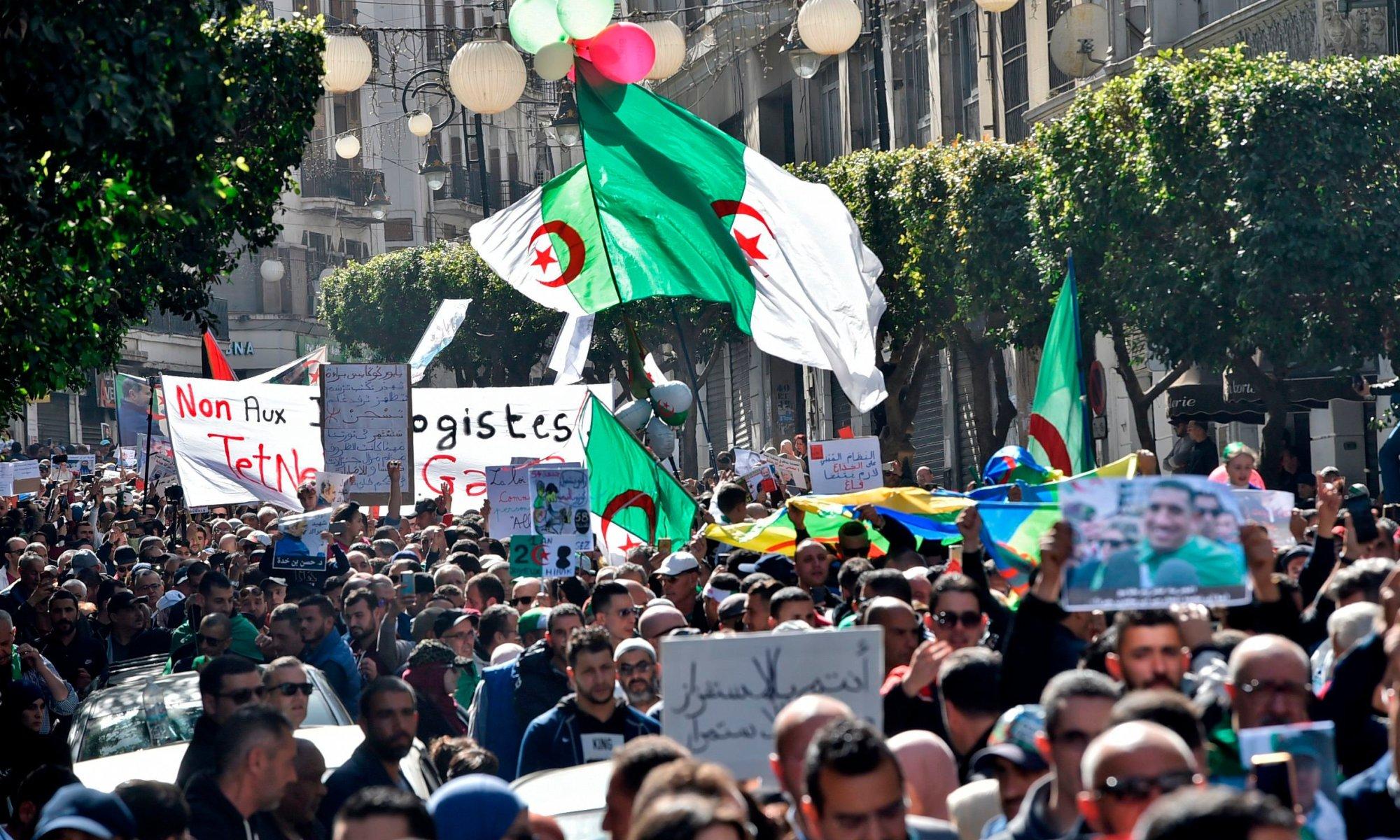 Mass of people in street, waving Algerian flag.