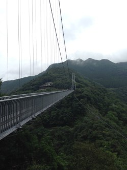 Check out that bridge!