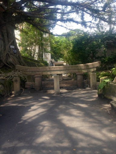 The buried Torii gate on Sakurajima - these guys usually stand pretty tall, but after the volcano erupted, this one was buried almost to the top