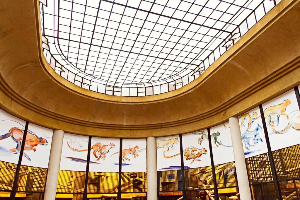 Ménagerie - zoo - Jardin des plantes à Paris