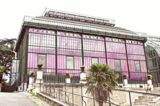 Une balade à… la Grande Mosquée de Paris, et au Jardin des Plantes graphic