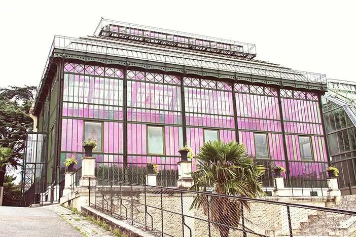 Une balade à… la Grande Mosquée de Paris, et au Jardin des Plantes